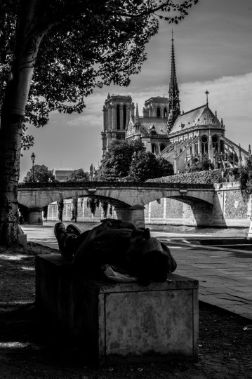 The Laid-Back of Notre Dame