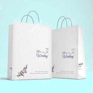 maẫu túi giấy đẹp đựng album ảnh cưới