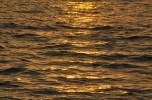 Nắng Vàng Quyện Sóng