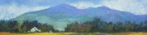 "Northern Indiana Artist Catherine McCormick, ""Near Flagstaff, Arizona"""