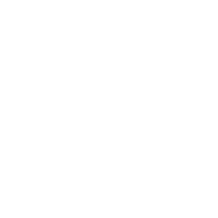 Niagara Packards logo