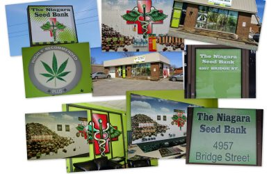 The Canadian Seed Bank That Will Meet and Exceed All Your Expectations – Locally and Through out North America