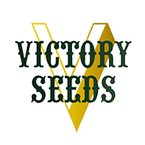 Victory Seeds -Feminized