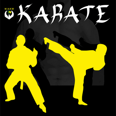 karate class graphic