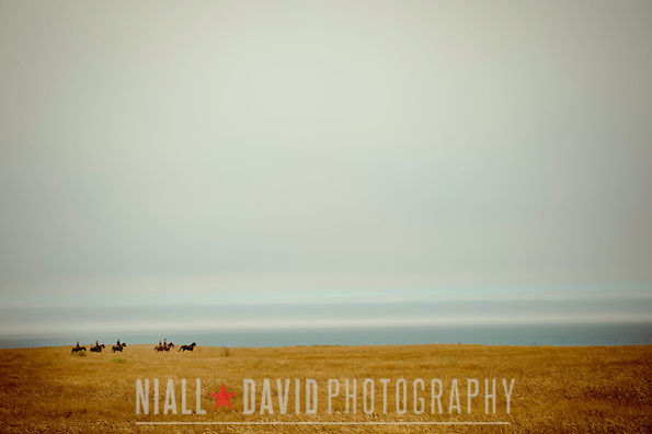 Northern California Coast Highway 1 Horses Fog Grassland Clouds Sky Ocean - Niall David Photography
