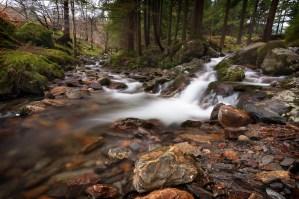 Glendalough, Co. Wicklow, Niall Whelan Photography,