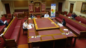 Health Committee Meeting Thursday 28th May 2020