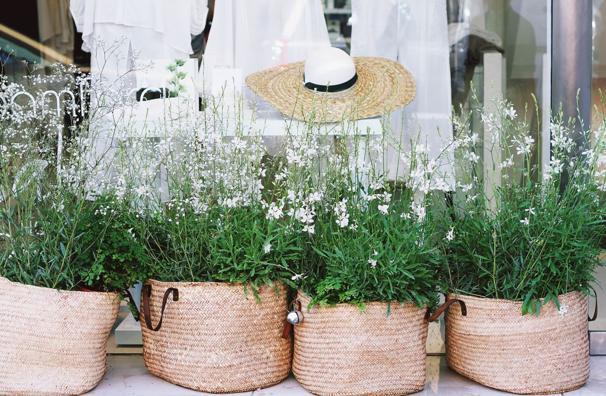 Picture of white flowers in baskets
