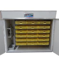 3000-eggs-incubator