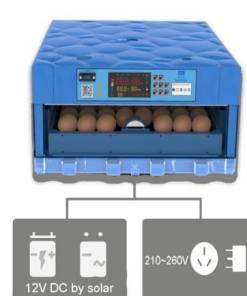 104-incubator