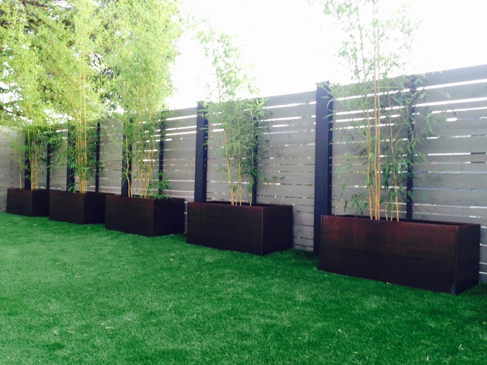 Growing Bamboo In Corten Steel Planters Nice Planter LLC