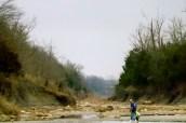 Pete Patterson Fossil park
