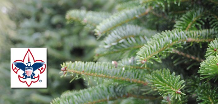2016 Boy Scout Christmas Tree Sale In Niceville This Weekend