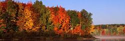 Canadian History & Environment Summer School - Ottawa: dd