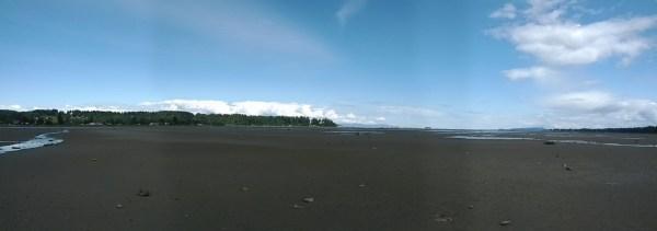 Tidal flats of Comox Harbour.