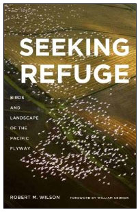 seekingrefuge