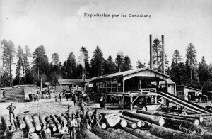 """""""Exploitation par les Canadiens."""" Canadian Forestry Corps Mill. Source: Canada. Dept. of National Defence / Library and Archives Canada / PA-022980"""