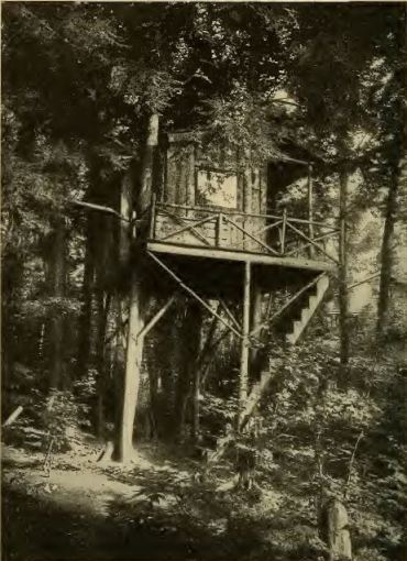 "An example of the type of tree house used for ""open-air living. (Thomas Carrington, Fresh Air and How to Use it, (Philadelphia: W.M.F. Fell Co., 1912), iv.)"