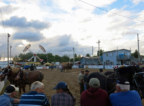 Horse pull, Halifax County Exhibition, 2014