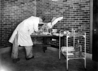 Figure 3: Photograph acc1125, Sanofi Pasteur Canada (Connaught Campus), Toronto, Archives.