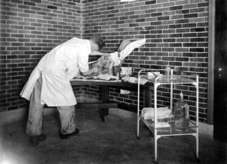 Figure 3: Photograph acc1125, Sanofi Pasteur Canada (Connaught Campus), Toronto, Archives.