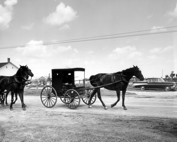 "Horse-drawn Old Order Mennonite ""dach weggly"" in southern Ontario., 1986  Credit: Mennonite  Archives of Ontario, Waterloo ON  CA MAO 1986-1 79"