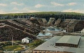 "This 1908 image of the log pile outside of Great Northern Paper illustrates the scale of its operation. Economic exploitation of the environment characterized New England's ""first nature."""