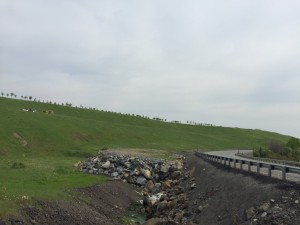A view of the re-greened slag storage area from Big Nickel Mine Drive, circa 2015. Author's photo.