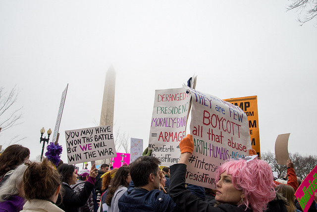 Examples of protest signs that connected environmental issues with social issues. Women's March, Washington D.C., February 2017. Source: VeryBusyPeople, FlickrCommons
