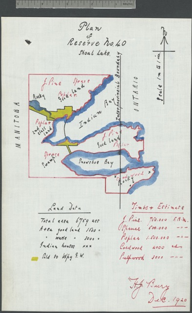 """Plan of Reserve No. 40,"" Shoal Lake, December 1920, Library and Archives Canada, Mikan 3719724."
