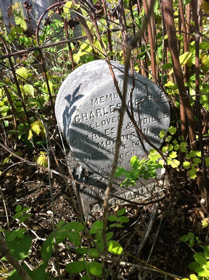 Grave in Hazleton, British Columbia