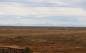 Federal Pasture Lands, Saskatchewan 2018 (with Bear Paw Mountains in Montana in the background)