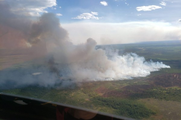 image of wildfire smoke billowing above forest