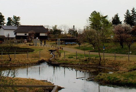 Komerebi Village at Showa Kinen Koen.