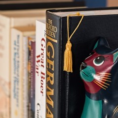 bookshelf-790392_640