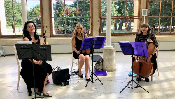 Niche London String Trio