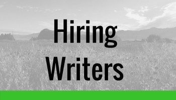 How to Hire Writers for Niche   Authority Sites  without stress     RedScams Once