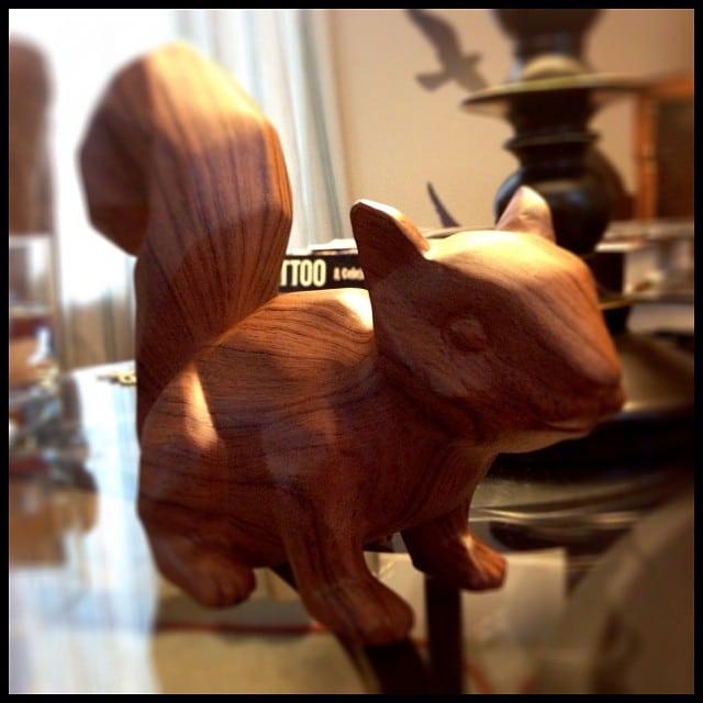 Nicks wood squirrel