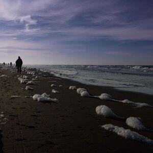 Strandblasen #bergenaanzee #nordsee