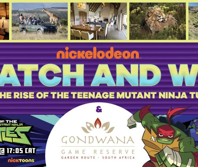 Rise Of The Tmnt Watch N Win Competition