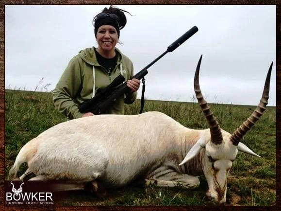 Blesbok guided hunt