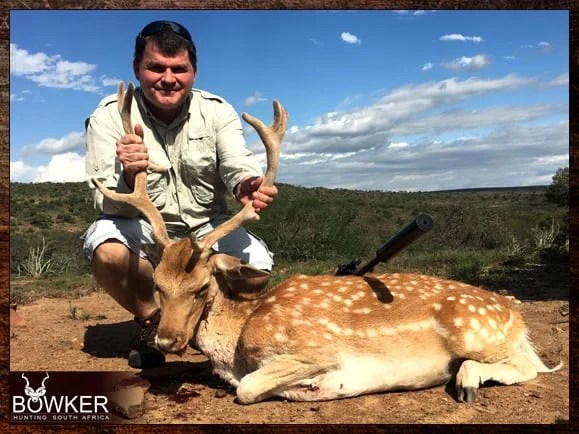 Light tan with white spots fallow deer trophy.