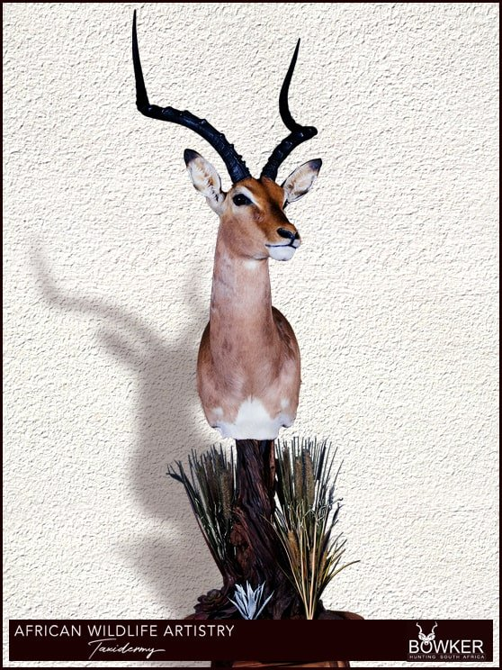 Impala floor pedestal mount