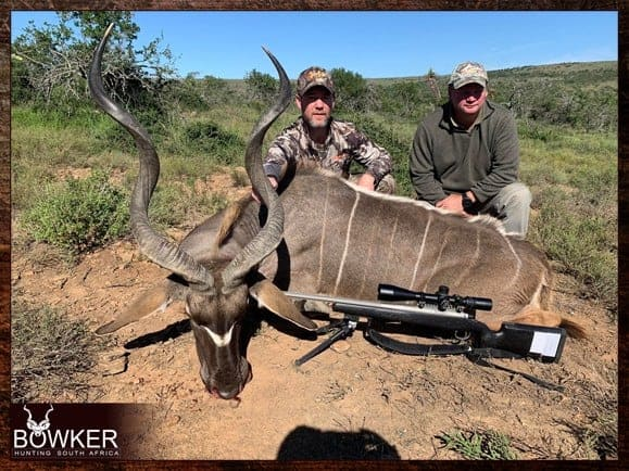 Kudu trophy. The Eastern Cape Kudu has smaller horns than, the Greater Kudu.