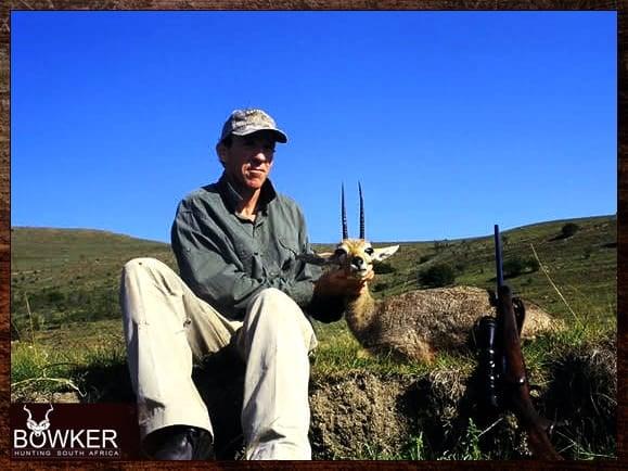 Grey rhebok hunting