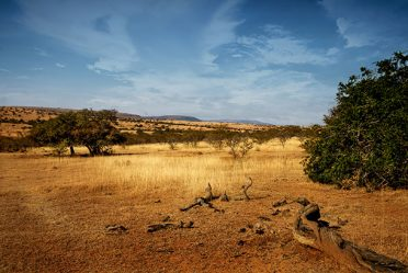 The Eastern Cape is malaria-free and makes for safe south African hunt.