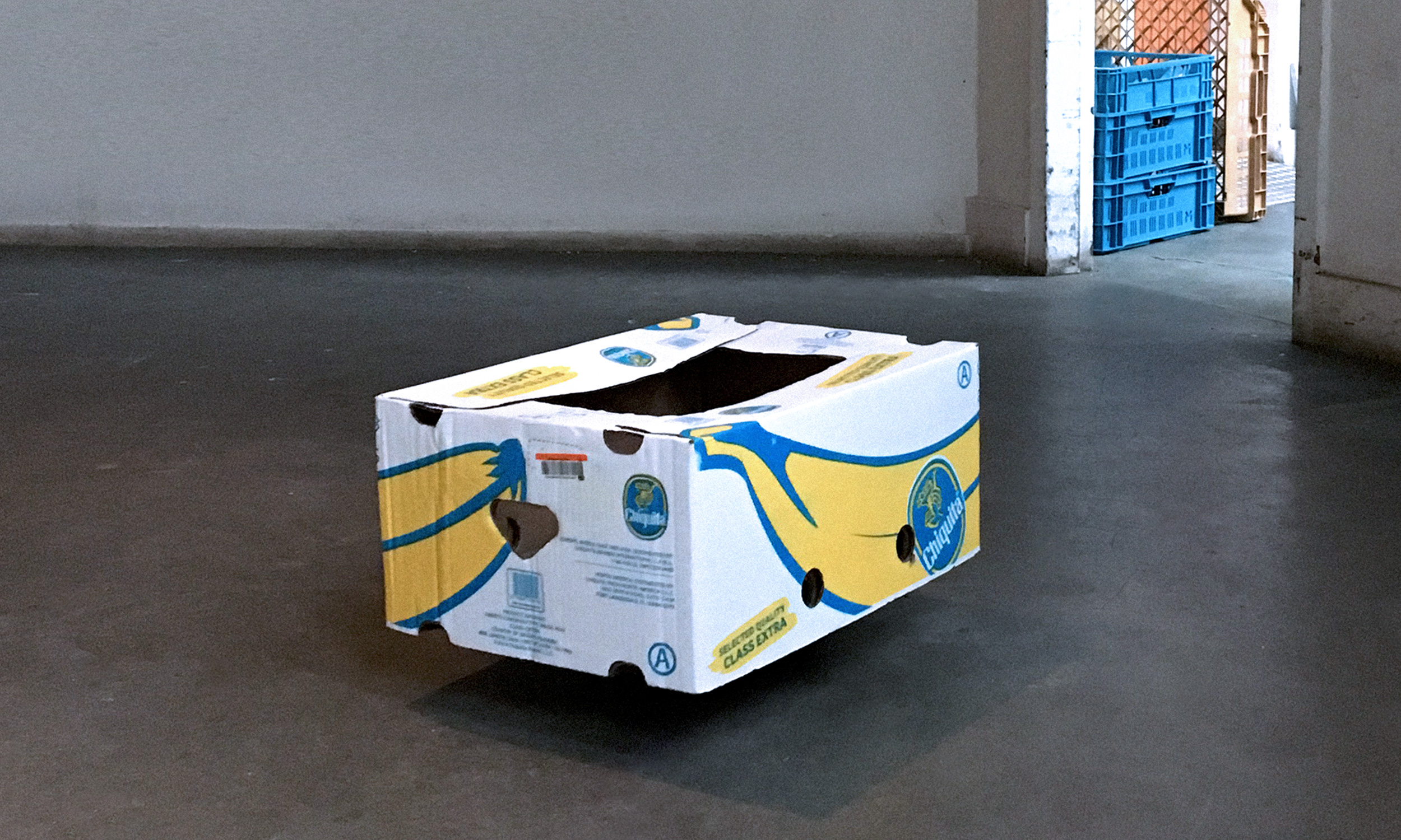 Two Banana Boxes, A Love Story