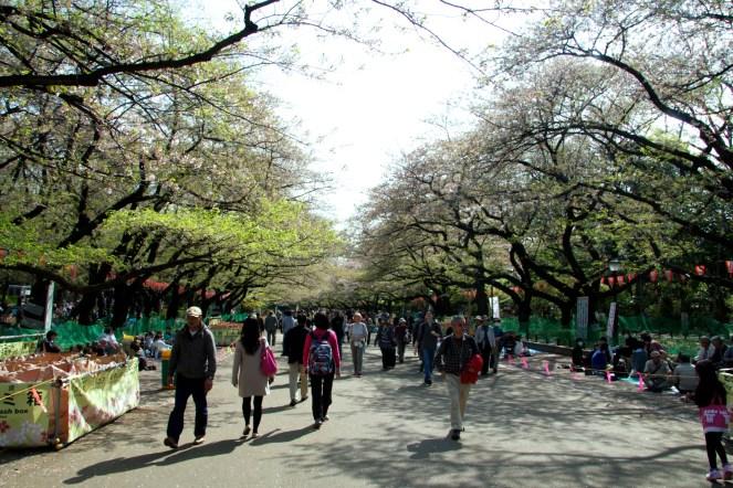 011_Ueno Park_04042013