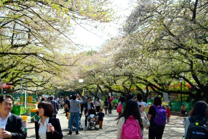 019_Ueno Park_04042013