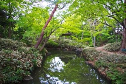 061_Rikugien Garden_04102013
